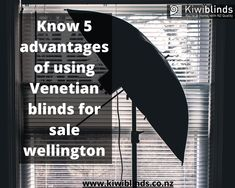 Nowadays you must have seen that there is a window in every room. These blinds add beauty to the house. Usually, we buy blinds or curtains according to the wall color or some buy according to the contrast.