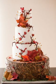 Country Wedding Cakes 15 Elegant Fall Wedding Cakes - Ideas for Fall Wedding Cake Flavors and Design - We'd get married all over again for a few of these beauties. Wedding Cake Rustic, Fall Wedding Cakes, Beautiful Wedding Cakes, Beautiful Cakes, Amazing Cakes, Wedding Ideas, Wedding Decorations, Trendy Wedding, Wedding Colors