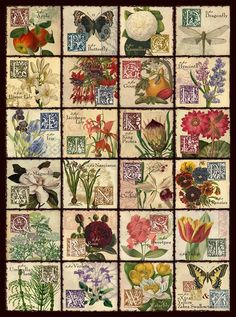 Jigsaw Puzzles - Vintage Flora