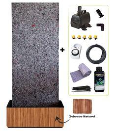 Rencontre avec Greenjee – Le mur végétal en kit | Tableauvegetal.com