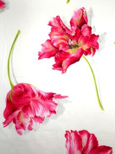 pink feria manuel canovas fabric | Fabrick atHAMILTON HOUSE INTERIORS