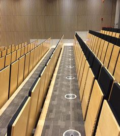 The award-winning JumpSeat® is an innovative and contemporary chair, ideal for lecture halls, auditoriums, reception areas and home environments. Cinema Chairs, Auditorium Seating, Contemporary Chairs, Reception Areas, Life Hacks, Conference Room, Awards, Wood, Furniture