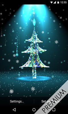 Colorful Christmas Tree Live Trees Scenes Wallpaper