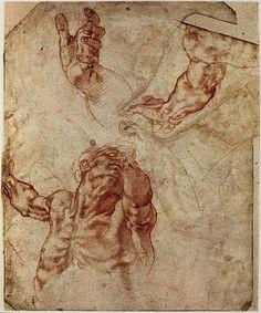 Michelangelo Studies for Sistine ceiling - Creation of Adam ca. 1511 drawing Teylers Museum, Haarlem Michelangelo Studies for Si. Male Figure Drawing, Figure Sketching, Life Drawing, Painting & Drawing, Figure Drawings, Anatomy Drawing, Anatomy Art, Anatomy Study, Art History