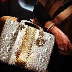 Dior Snake Bag