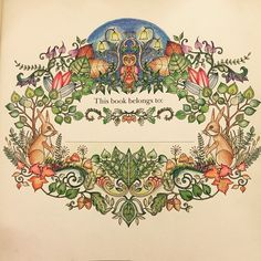 Because Adult Coloring Books Are Awesomejust Bought And Started The Enchantedforest Johanna Basford Secret GardenPencil