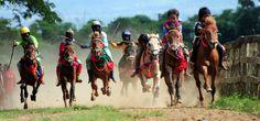 Pacuan kuda Sumbawa, Nusa Tenggara Timur