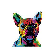 East Urban Home Rainbow French Bulldog on White by Michael Tompsett Graphic Art on Wrapped Canvas Size: