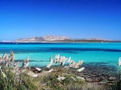 Regalati il lusso di svegliarti al mare! Il Buddi Hotel ti aspetta direttamente sulla spiaggia di Platamona. Vai sul sito www.buddihotel.com e prenota le migliori offerte con #htlbooking #bookingengine #sardegna #beach #summer #mare #relax #prenotazionediretta