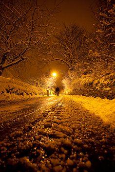 Lovely winter light...