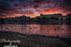 Bloody Morning by Martin Flashback - Photo 123393593 - 500px