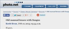 Old manual lenses with fungus - Photo.net Classic Manual Cameras Forum