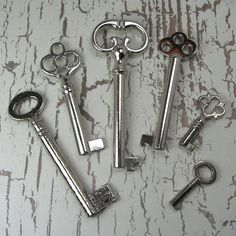 Skeleton keys? More likely the keys to (From Left to Right) Numor, Hyaron, Sycluse, Tangent, Mycrí and the tinest one may even be for the Narrow World.
