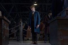 """O personagem Newt Scamander, de J. K. Rowling, chega à Nova York em cena do trailer de """"Animais fantásticos e onde habitam"""" (Foto: Reprodução Youtube)"""
