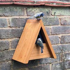 Wooden Bird Feeders, Wooden Bird Houses, Bird House Feeder, Diy Bird Feeder, Bird Houses Diy, Bird Nesting Box, Nesting Boxes, Squirrel Home, Bird House Plans Free