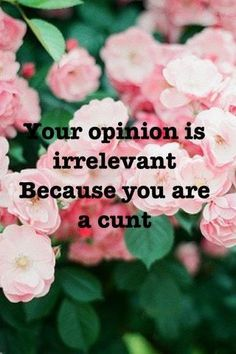 Your opinion is irrelevant...
