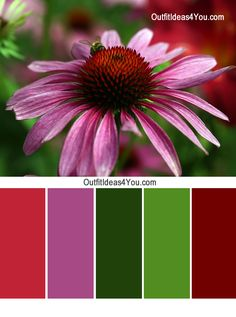 Use this fun outfit color combination to try something new with your red. Red Green Violet. For more outfit ideas and color combinations, visit http://OutfitIdeas4You.com