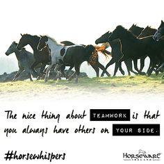 #horsewhispers #horseware #teamwork #rugsforlife #motivation #inspiration #truth #equestrianlife #horsesofinstagram