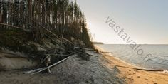 Beach at Manamansalo, Kainuu county, northeastern Finland. Lake Oulunjärvi | Hiekkaranta - Manamansalo Kainuu Oulunjärvi