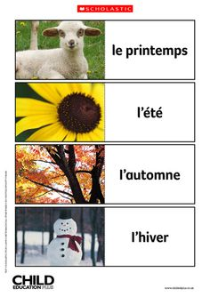 These eight colourful flashcards feature the French and English words for spring, summer, autumn and winter.