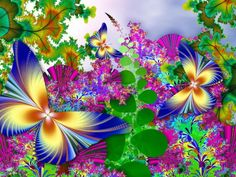 butterfly fractal