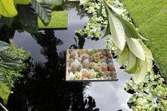 Galeria zdjęć - Chelsea Flower Show 2015 - migawki i różności ogrodowe - Ogrodowisko