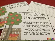 How do we use plants