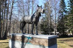 A statue to honor the Finnhorse breed which was developed fully in Finland. South Ostrobothnia province of Western Finland.