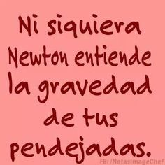 Not even Newton understands the gravity of his bullshit Funny Facts, Funny Quotes, Mexican Humor, Quotes En Espanol, Frases Humor, Some Quotes, Spanish Quotes, T 4, Funny Moments