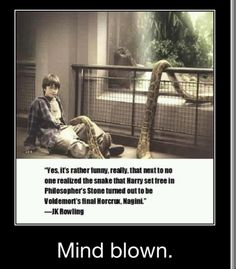 Gotta love harry potter