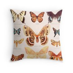 Items similar to Vintage Pillow Cover Vintage Dictionary Illustration Butterflies Science Chart Insects Brown Yellow Fall Home Decor on Etsy Fall Home Decor, Autumn Home, Home Decor Items, Throw Pillow Cases, Pillow Covers, Throw Pillows, Science Chart, Photography Props Kids, Butterfly Decorations