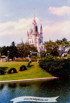 From my blog: www.incindysshoes.com - My parents Walt Disney World honeymoon back in 1982! Magic Kingdom, Cinderella's Castle with the sea serpent topiary!
