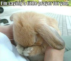 I say a little prayer for you ♡