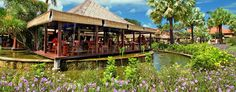 AYANA Resort and Spa: One of 12 on-site restaurants, Padi serves exquisite Thai from its lilly pad-styled pavilions.
