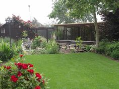 Landscaping/aviaries