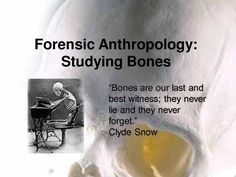 Forensic Anthropology Bones are the best story tellers they show us the events that happen in the past. They are our photo albums. You just have to learn how to read them. Anthropology Major, Biological Anthropology, Forensic Anthropology, Teaching Technology, Teaching Biology, Forensic Files, The Lovely Bones, Forensic Science, Environmental Science