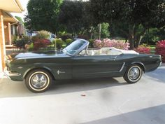 For Sale: 1965 Ford Mustang in Greenville, South Carolina Greenville South Carolina, Ford Mustang Convertible, Ford Mustang For Sale, Car Detailing, Exterior Colors, Colorful Interiors, Cincinnati, Antique Cars, Sport Cars