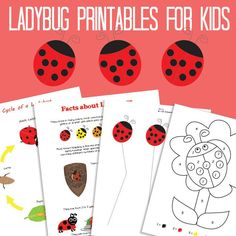 Ladybug Printables for Kids - Itsy Bitsy Fun Bug Activities, Printable Activities For Kids, Spring Activities, Library Activities, Ladybug Picnic, Ladybug Party, Ben Y Holly, Kids Cycle, Ladybug Crafts