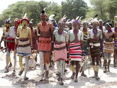 To reach manhood, Hamar boys must undergo two rituals: circumcision and a leap over the bu...