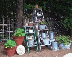 Junk gardening goes vertical. How to use that old ladder you see at a yard sale or Flea Market in your garden. re-purposing old wooden ladders is one of the most popular garden junk projects– Pictures tell the story, more. Old Wooden Ladders, Old Ladder, Wooden Pallets, Rustic Ladder, Garden Ladder, Garden Junk, Garden Art, Garden Kids, Big Garden