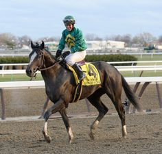 HONOR CODE, last year's Remsen winner who was second in an allowance in his 3-year-old debut on March 12, is off the Kentucky Derby trail after an injury was discovered Sunday morning.