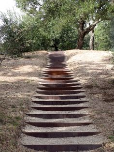Corten risers, gravel steps in a natural setting at Oliver Ranch, landscape by Andrea Cochrane