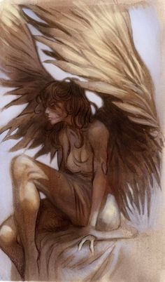 Fantasy-to me at least looks like Maximum Ride Angels Among Us, Angels And Demons, Fantasy Creatures, Mythical Creatures, I Believe In Angels, Ange Demon, Fantasy Characters, Light In The Dark, Cool Art