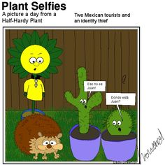 More visitors in Plant's garden Plant Cartoon, Hardy Plants, Identity, Mexican, Garden, Pictures, Character, Photos, Garten