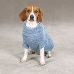 Knit a warm and cozy sweater for your dog this winter! Whether you're looking for a sweater for a Greyhound or a jacket for a Dachshund you'll find a free knitting pattern to suit you and your knitting skills level!