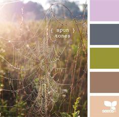 design seeds @jessica colaluca