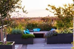 Large backyard landscaping ideas are quite many. However, for you to achieve the best landscaping for a large backyard you need to have a good design. Pergola Carport, Pergola Shade, Pergola Plans, Cheap Pergola, Pergola Kits, Rooftop Terrace, Terrace Garden, Outdoor Rooms, Outdoor Gardens