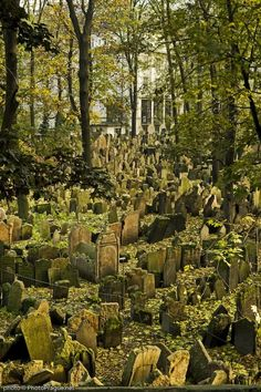 Old Jewish Cemetery - Prague Minos Guide