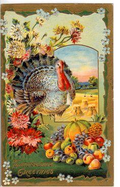 Thanksgiving Greetings Vintage Thanksgiving Postcard | Flickr - Photo Sharing!