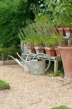 grusgång i trädgård, sarg som markerar gränsen mellan grus och gräs Garden Plants, Home And Garden, Outdoor Decor, Summer, Garden Ideas, Outdoors, House, Image, Casket